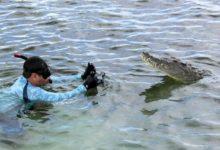 Photo of Da Avellino alla Florida per filmare  squali e coccodrilli